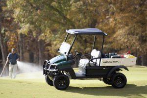 Charleston Golf cart